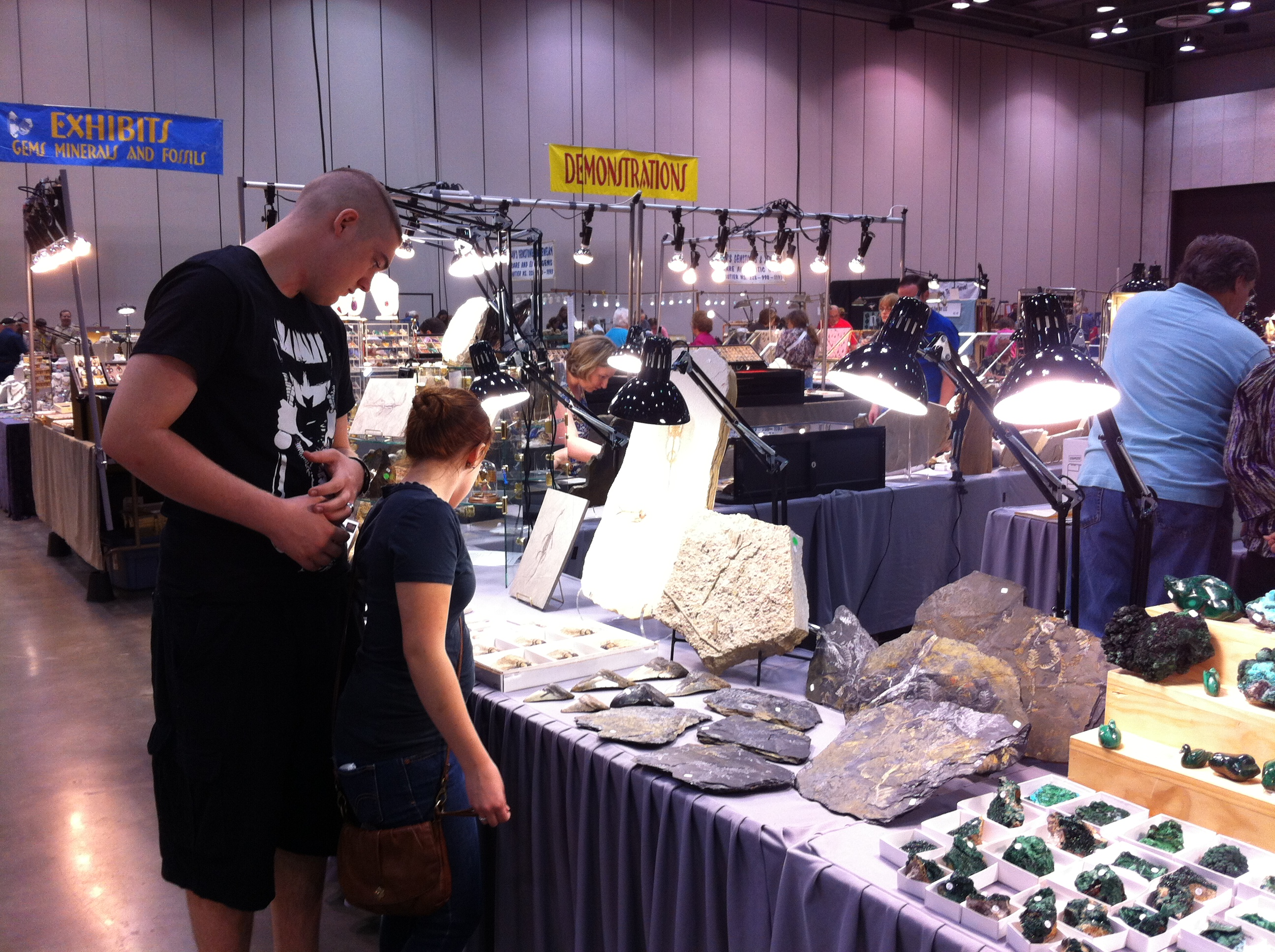 fossils at the Huntsville Gem, Mineral and Jewelry Show
